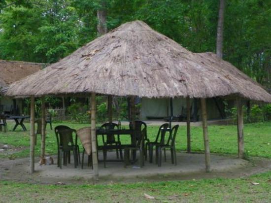 Nameri Eco Camp : PHOTO