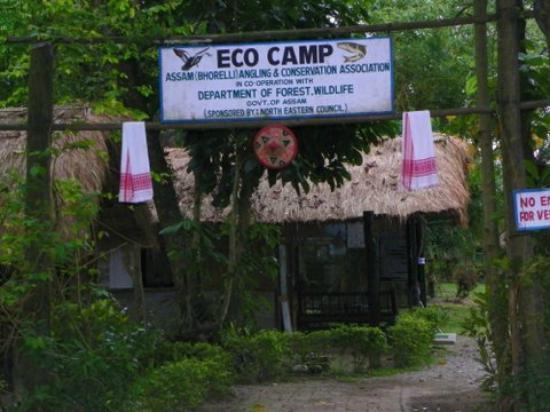 Nameri Eco Camp: PHOTO
