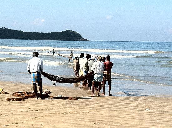 Visit Weligama: Traditional fishing communities