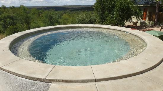 isiLimela Game Lodge : Dipping Pool