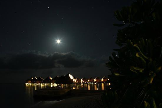 Baros Maldives : Stunning Views