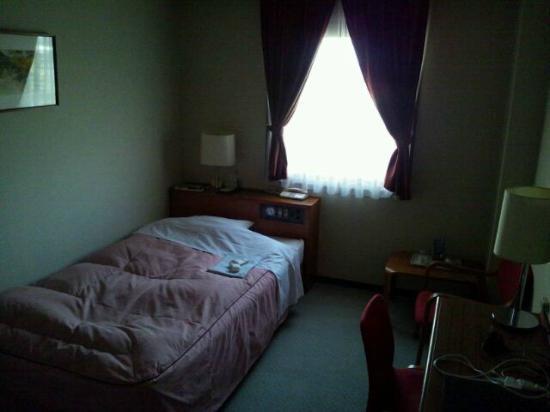 Hotel Sun Shine: 冷気が入ってくる窓