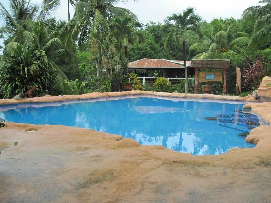 Hotel Los Mangos: pool