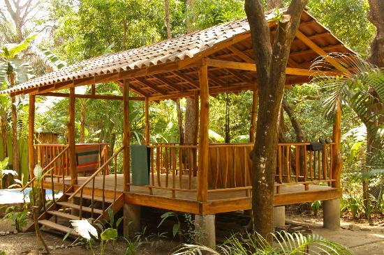 The Jungle House : yoga stage