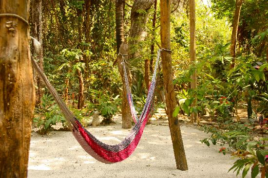 The Jungle House : hammocks in the garden