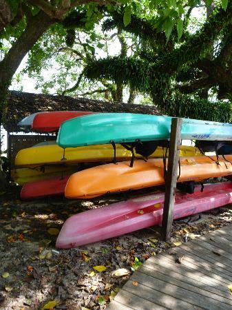 Bokissa Private Island Resort: Pick your kayak