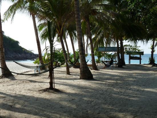 Redang Island: Hammocks by the beach
