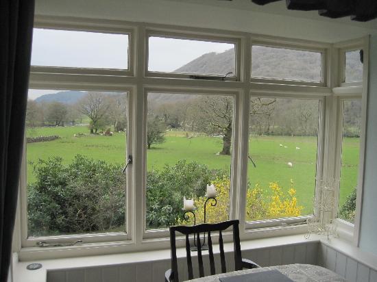 Tal-Y-Bont Country House B&B: view from breakfast room