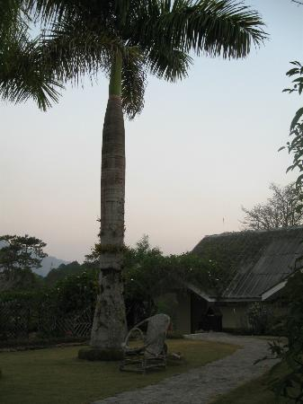 Pine Hill Resort, Kalaw: scorcio del giardino