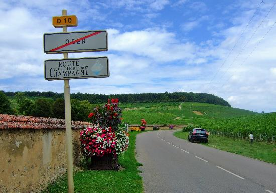 Champagne Route (Route Touristique du Champagne) : 花と緑が美しいです
