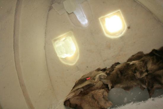 Arctic SnowHotel & Glass Igloos: Suite