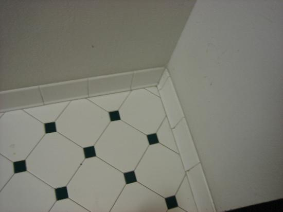 Days Inn Jacksonville Baymeadows: Notice the grout. White then gradually dark brown/black.