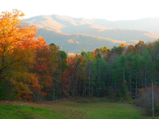 Late October View from the Front Porch of Hemlock Inn