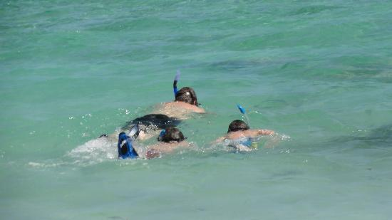 Villas DeRosa Beach Resort : snorkeling in front of room