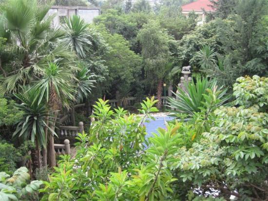 Bata Traditional Restaurant & Bar: Le jardin-3