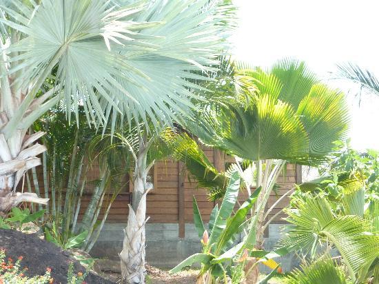 Villa Rose Caraibes : gwada