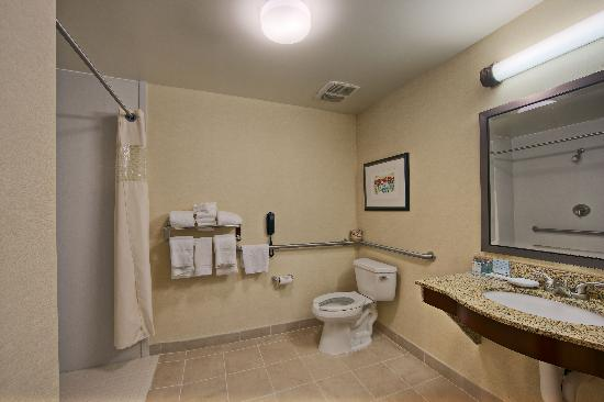 Hampton Inn & Suites Lancaster: ADA Roll-in Shower