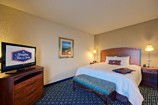 Hampton Inn & Suites Lancaster: King Standard