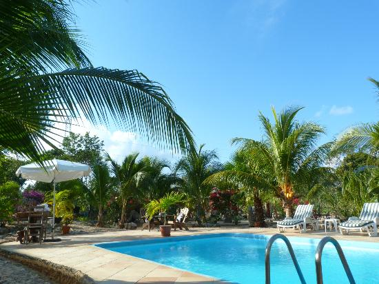 Itour Akumal Villas Tortugas: la piscine