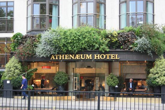 The Athenaeum Hotel & Residences: Athenaeum Hotel