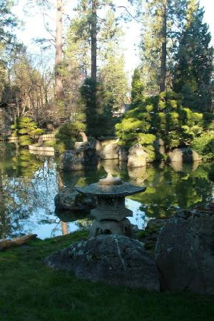 Manito Park: The water in the Japanese Gardens