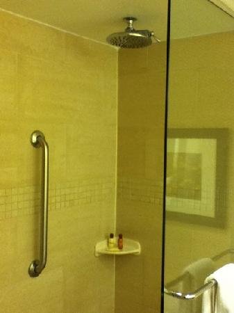 Sheraton Stamford Hotel: awesome shower