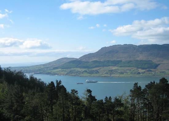Rostrevor Holidays: Carlingford Loch Looking South