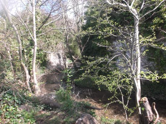 Dyserth Waterfall 사진