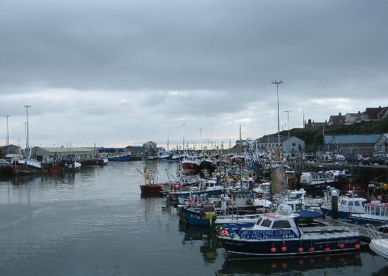Rostrevor Holidays: Kilkeel Harbour