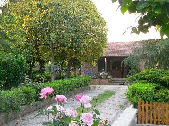 La Casa Del Pettirosso