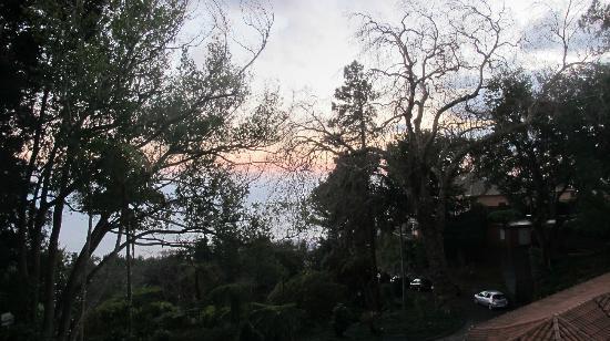 Quinta do Monte: vue du jardin
