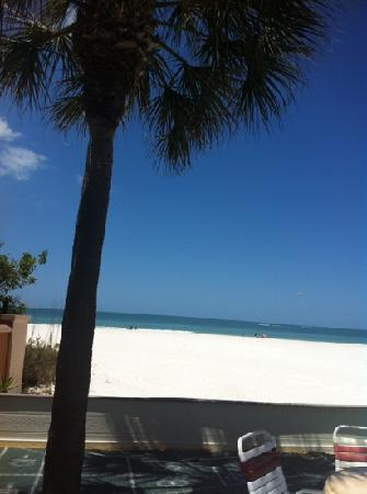 Long Key Beach Resort & Motel: view from pool deck