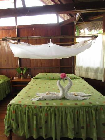 Photo of Wasai Tambopata Lodge Tambopata National Reserve