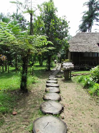 Wasai Tambopata Lodge: Wasai Grounds