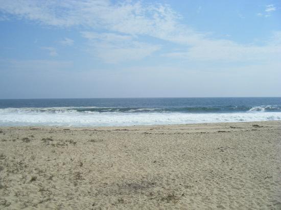 Sol y Arena Beach Hostel: Hermosa vista del mar