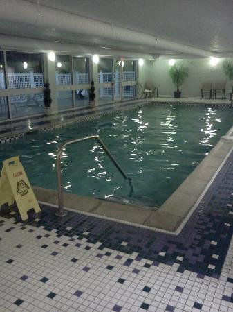 BEST WESTERN PLUS Executive Court Inn & Conference Center: Pool
