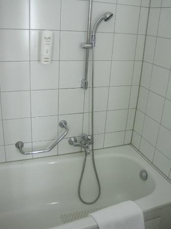 Arcadia Hotel Heidelberg: 部屋のバスルームです