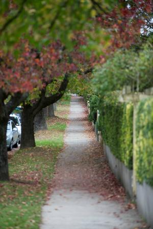 Secrets Hideaway: Blackheath street in autumn colour