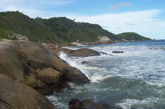 Bombinhas: Mariscal, imperdible!!!! hermosa playa