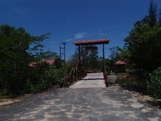 Dat Lanh Resort : Entrance to hotel