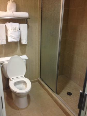 Holiday Inn Hotel & Suites Phoenix Airport : awesome shower