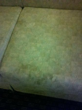 Comfort Inn West: DISGUSTING SOFA STAINS