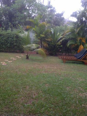 Dalmanuta Gardens - Ayurvedic Resort & Restaurant: Room Garden