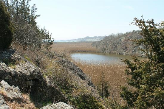Norman Bird Sanctuary: View from Hanging Rock Trail