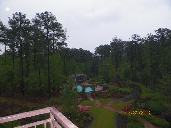 The Lodge and Spa at Callaway Gardens: View from room