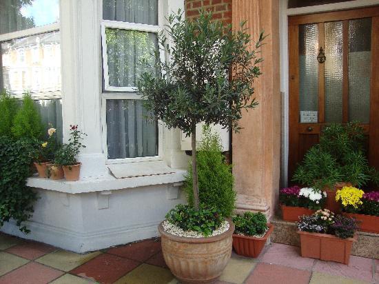 Star Hotel B&B: Blumen am Eingang