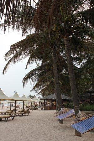 كوكو بيتش ريزورت: A beautiful beach