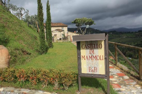 كاستيلو دي مامولي: Castello Di Mammoli