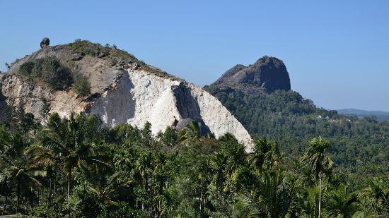 Misty Mount Homestay : Rocks above the jungle