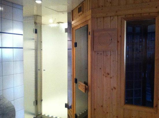 Hotel de l'Arve: Sauna